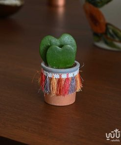 هويا قلب الحب في اصيص فخاري